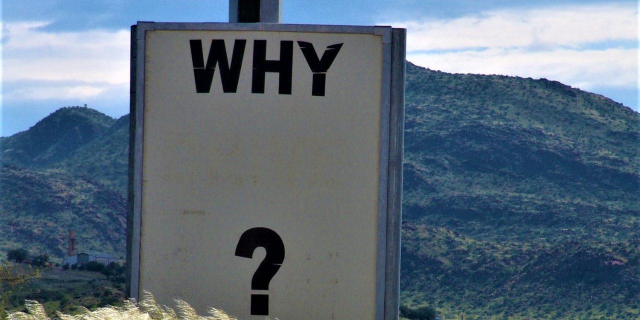 Pourquoi adopter une Customer Data Platform (CDP) ?